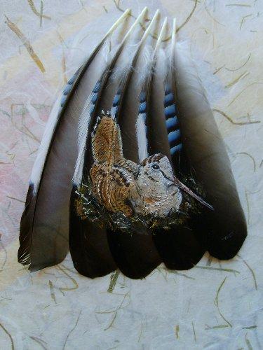 2006-06-06 : David Mayet - Peintre sur plumes. 9009