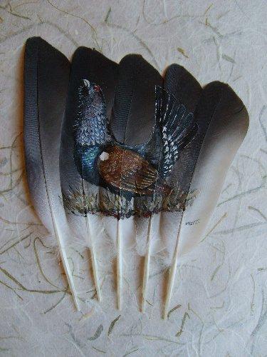2006-06-06 : David Mayet - Peintre sur plumes. 9010