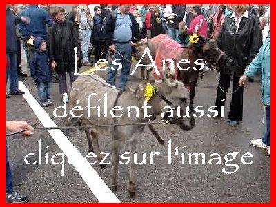 La 19 ème Désalpe de St-Cergue (VD) 0031a