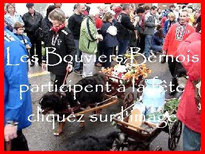 La 19 ème Désalpe de St-Cergue (VD) 0049a