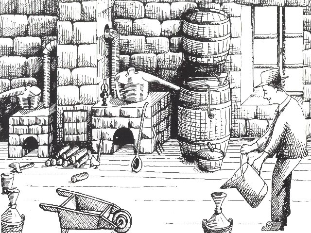 La Gentiane - Fleurs, Racines et Distillation - (25) 0014