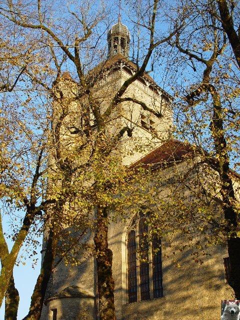 043 - Orgelet (39) L'église Notre Dame  0012