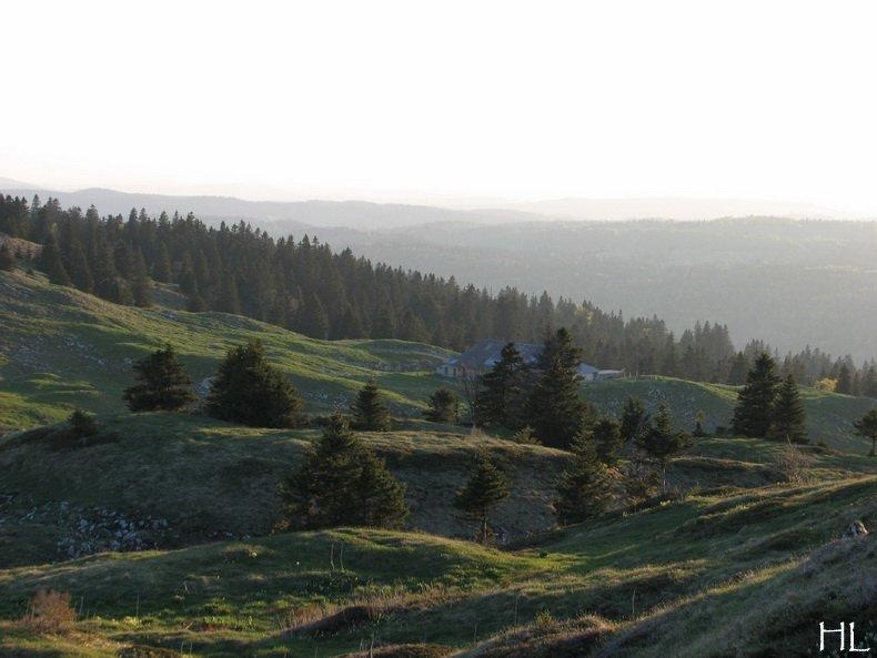 Fin d'après-midi sur les Monts Jura - 23 mai 2010 0005