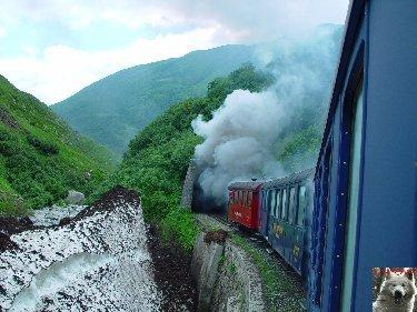 Entre Valais et Uri - La Furkabahn-Bergstrecke  0031