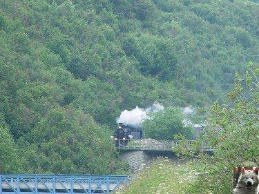 Entre Valais et Uri - La Furkabahn-Bergstrecke  0105