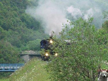 Entre Valais et Uri - La Furkabahn-Bergstrecke  0108