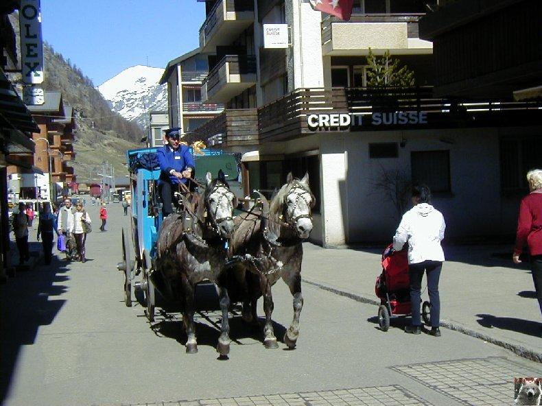 Excursion au Gornergrat - 9 août 2012 011