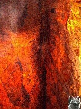 Les grottes de Baume les Messieurs (39) 0010