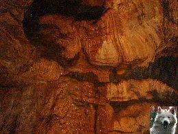 Les grottes de Baume les Messieurs (39) 0015