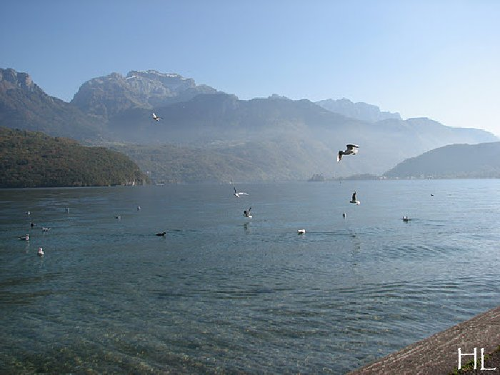 Le lac en partage - Un très inhabituel lac d'Annecy - 24-10-2011 Hl_annecy_013