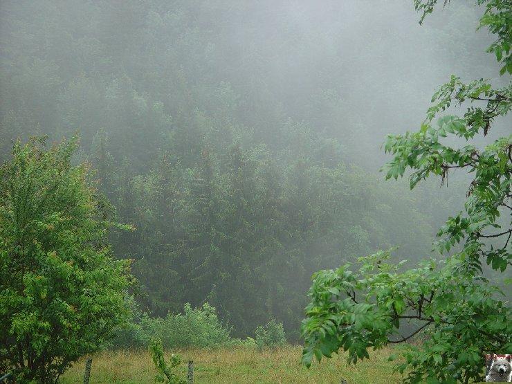 9 Juillet 2007 à La Tanière 0005