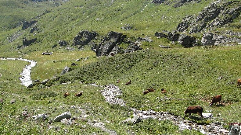 Entre Maurienne et Tarentaise - Le col de l'Iseran - 17/08/2010 0010