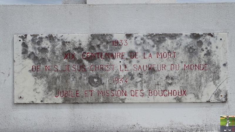 2018-05-26 : La Croix des Couloirs et Sabots de Vénus - Haut-Jura (39-01) 2018-05-26_croix_couloirs_21