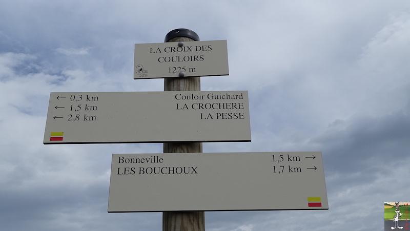 2018-05-26 : La Croix des Couloirs et Sabots de Vénus - Haut-Jura (39-01) 2018-05-26_croix_couloirs_24