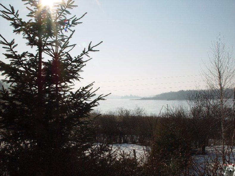 Le Lac de l'Abbaye en Grandvaux (39) 0003
