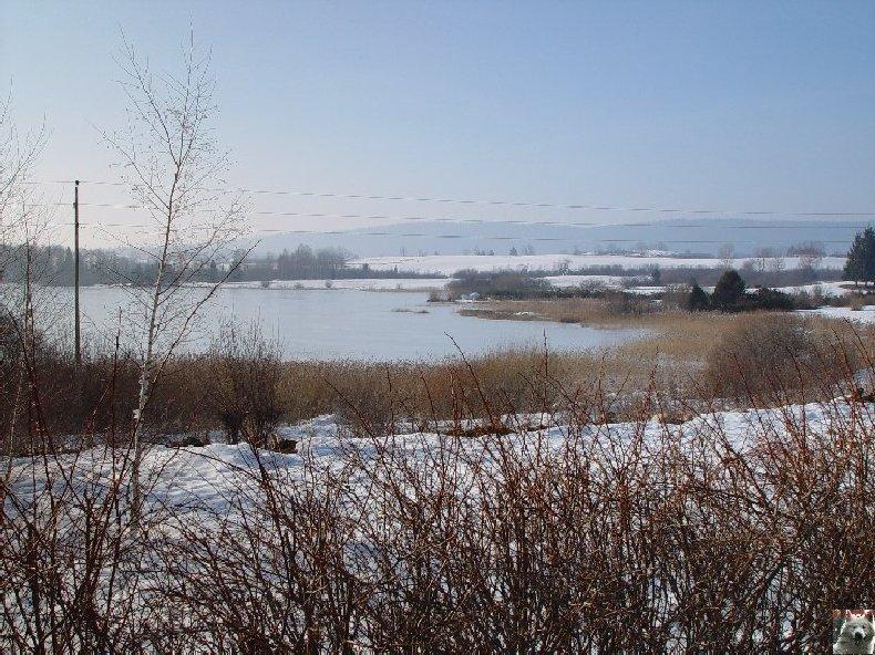 Le Lac de l'Abbaye en Grandvaux (39) 0004