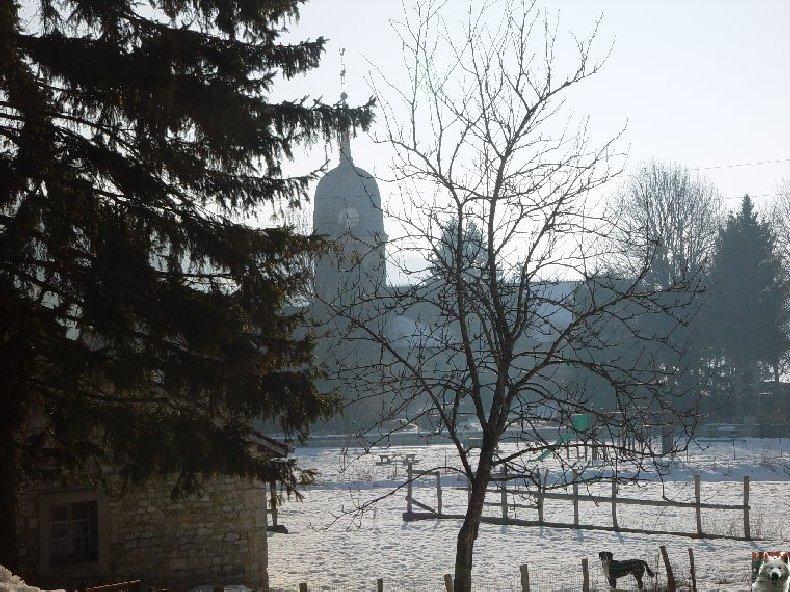 Le Lac de l'Abbaye en Grandvaux (39) 0005