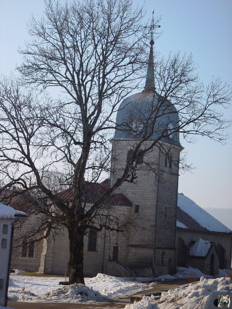 Le Lac de l'Abbaye en Grandvaux (39) 0006