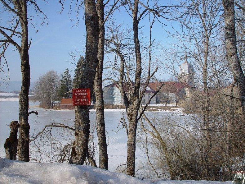 Le Lac de l'Abbaye en Grandvaux (39) 0009