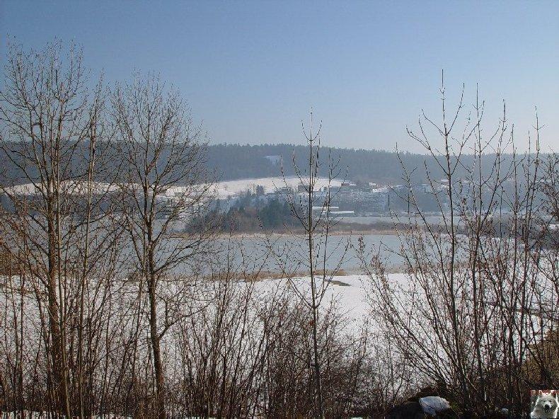 Le Lac de l'Abbaye en Grandvaux (39) 0014