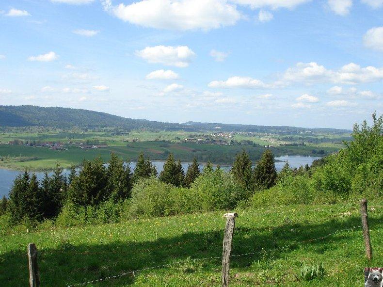 Le Lac de l'Abbaye en Grandvaux (39) 0015