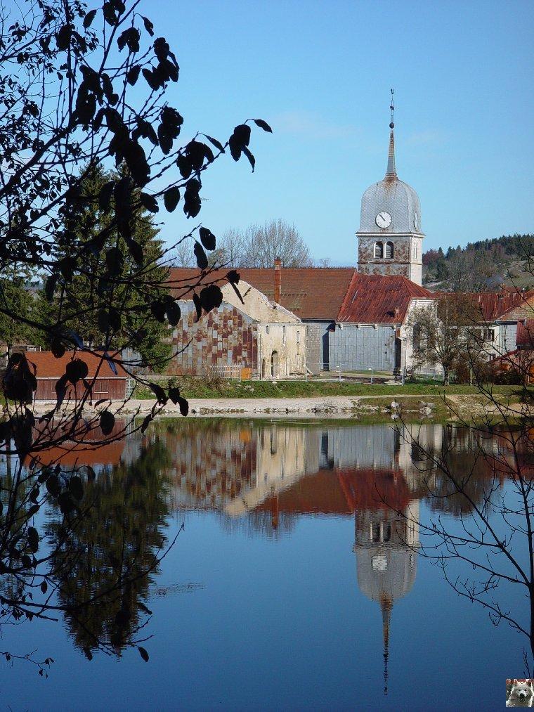 Le Lac de l'Abbaye en Grandvaux (39) 0018