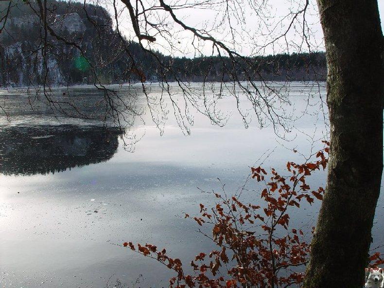 Le Lac de Bonlieu (39) 0003