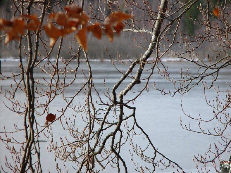 Le Lac de Bonlieu (39) 0004