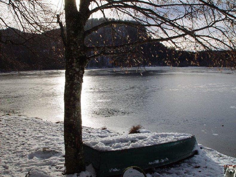 Le Lac de Bonlieu (39) 0005