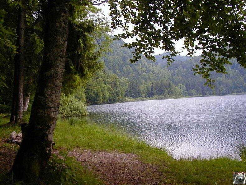 Le Lac de Bonlieu (39) 0007