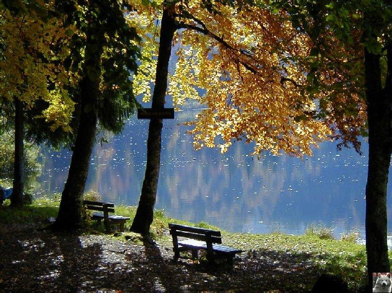 Le Lac de Bonlieu (39) 0008