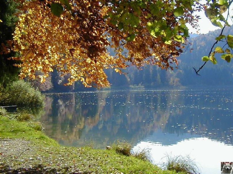 Le Lac de Bonlieu (39) 0010