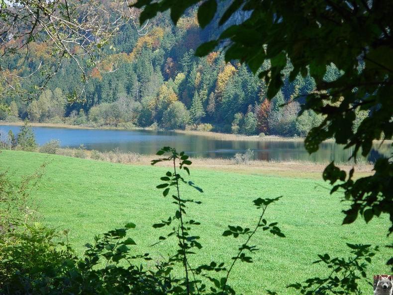 Le lac d'Etival (39) 0002