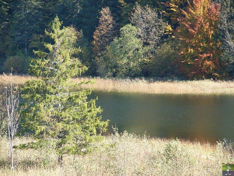 Le lac d'Etival (39) 0005a