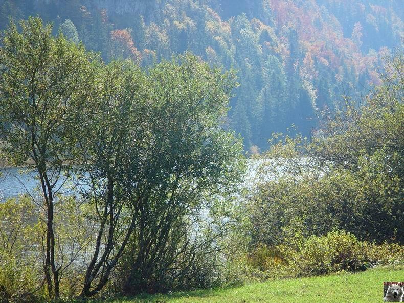 Le lac d'Etival (39) 0007