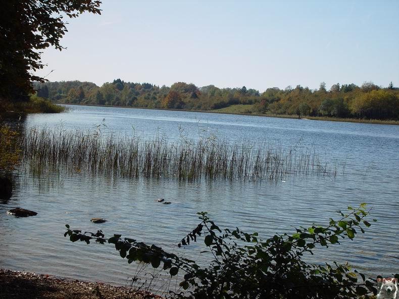 Le lac d'Etival (39) 0010
