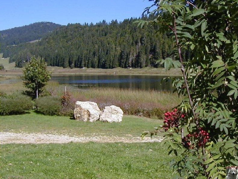 Le lac de Lamoura (39) 0003