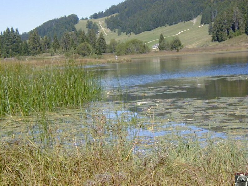 Le lac de Lamoura (39) 0010