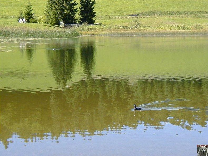 Le lac de Lamoura (39) 0017