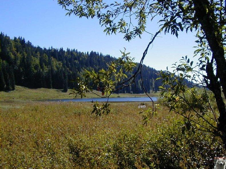 Le lac de Lamoura (39) 0022