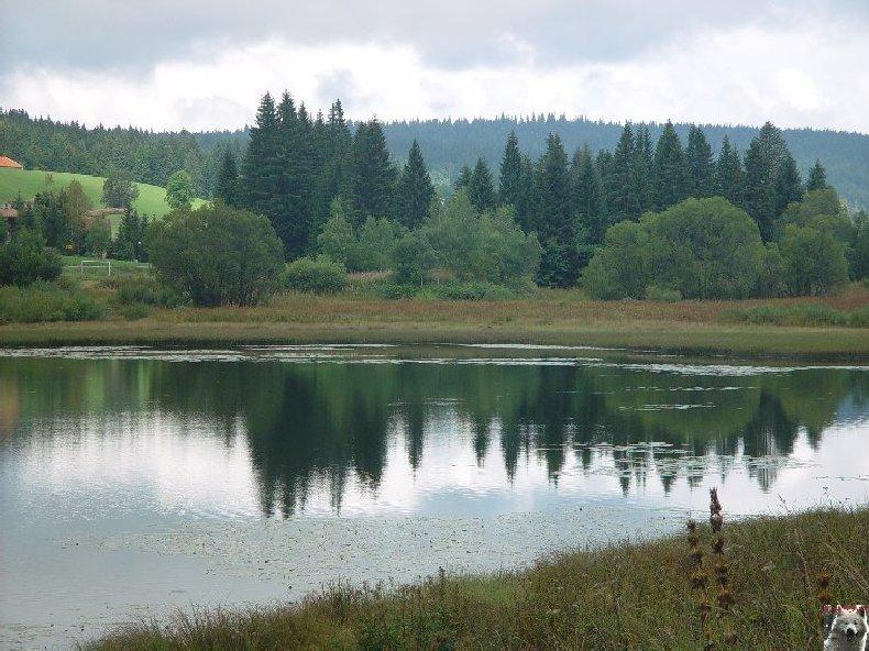 Le lac de Lamoura (39) 0027