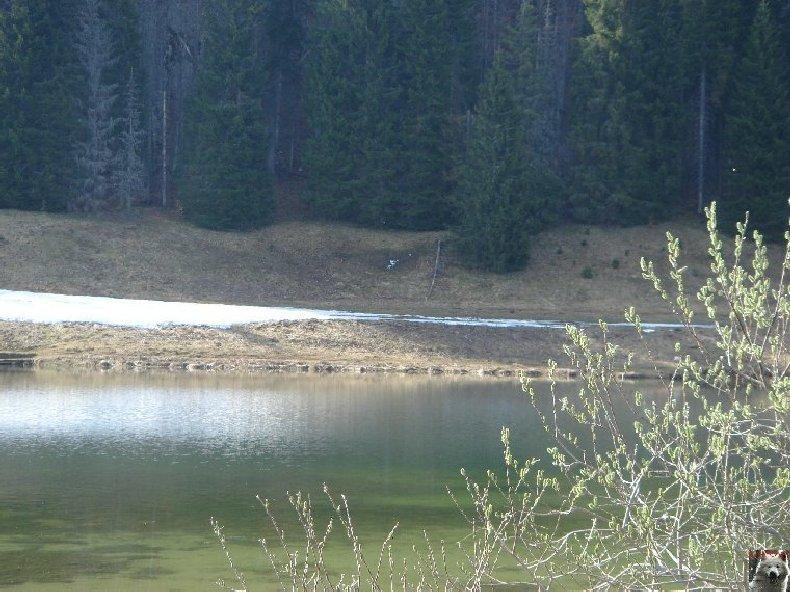 Le lac de Lamoura (39) 0033