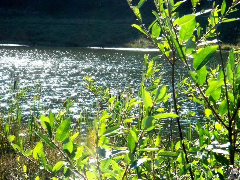 Le lac de Lamoura (39) 0044