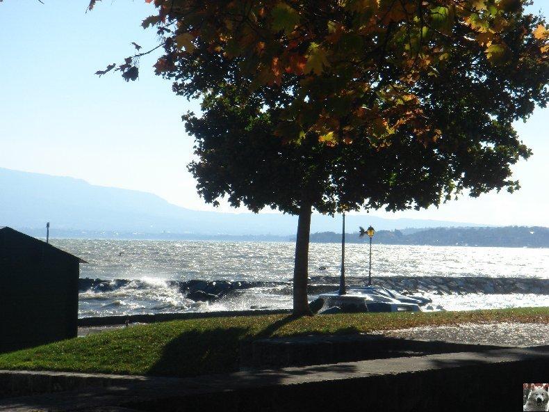 On a démonté le Lac Léman - 20-10-2007 0003