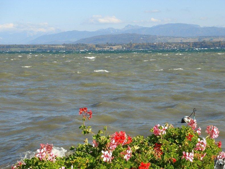 On a démonté le Lac Léman - 20-10-2007 0006