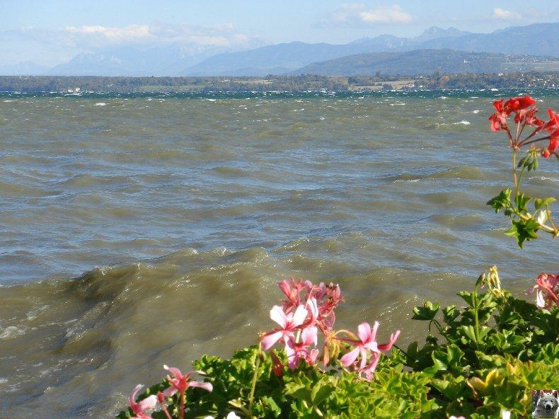 On a démonté le Lac Léman - 20-10-2007 0007
