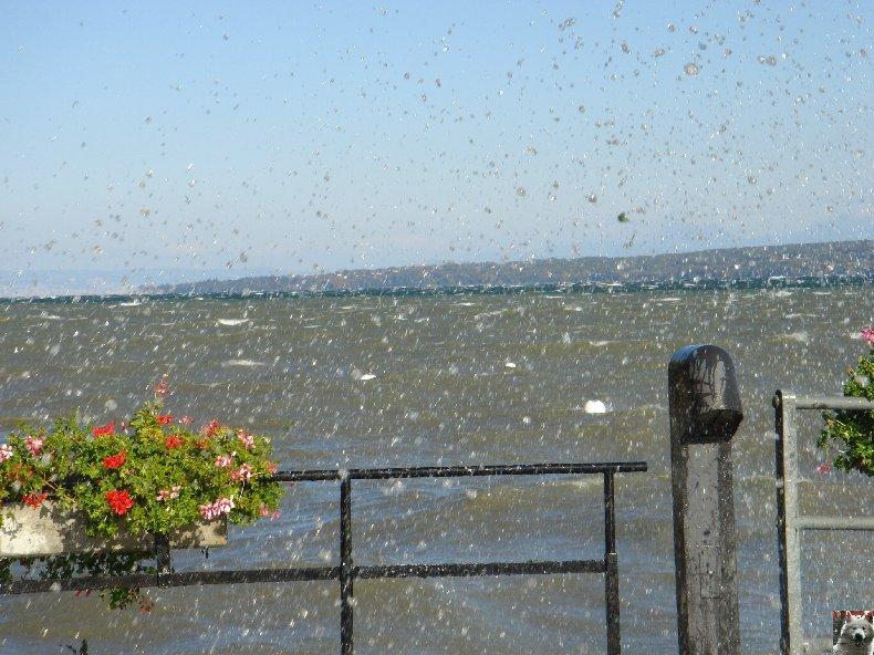 On a démonté le Lac Léman - 20-10-2007 0010