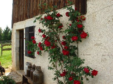 Musée de Plein Air des Maisons Comtoises - Nancray (25) 0075