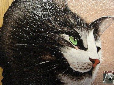 2007-08-16 : Patrick Verdier peint sur ardoise, sur peau, sur carrosserie ... 0022