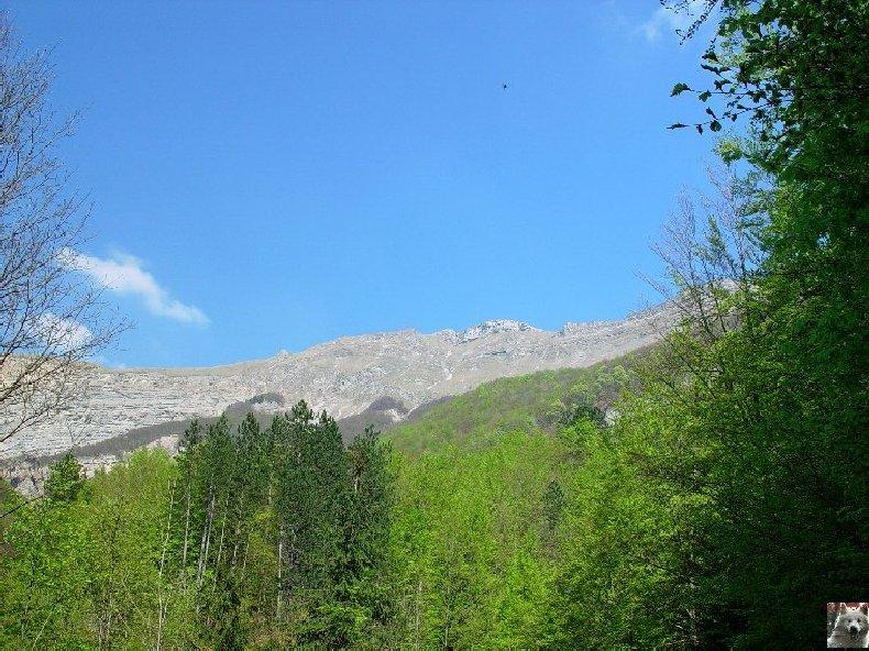 A la découverte de quelques paysages hauts-jurassiens 0011